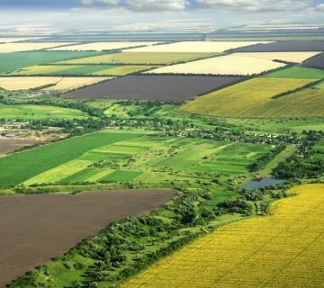 Drzavni programi podsticanja poljoprivrede kroz dodelu bespovratnih sredstava